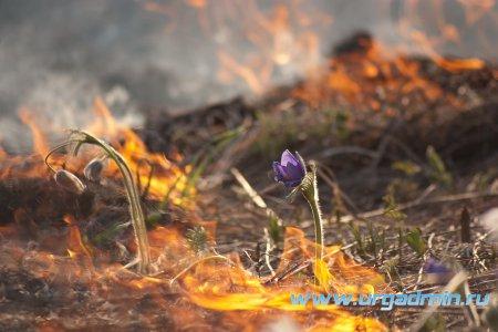 """Пожароопасный период """"весна - лето"""""""