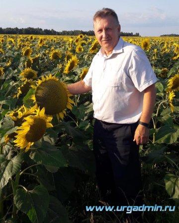 В Юргамышского районе приступили к уборке урожая.