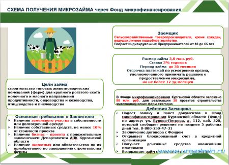 Схема получения микрозайма через Фонд микрофинансирования