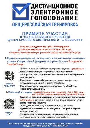 Избиратели Курганской области могут принять участие в общероссийской тренировке по применению системы дистанционного электронного голосования